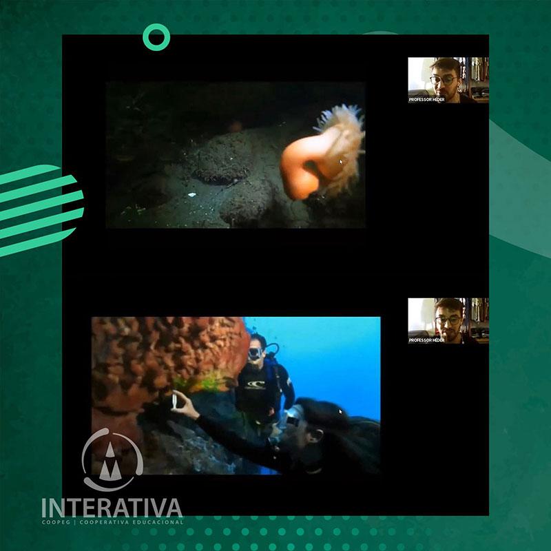 Aula - Invertebrados Aquáticos | 3º anos