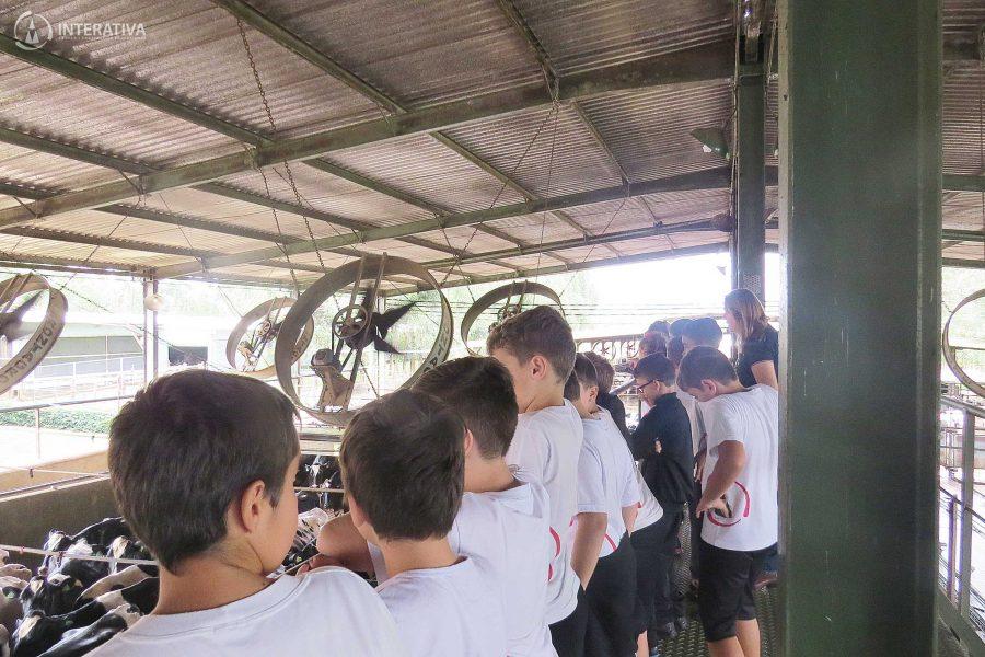 Visita à Fazenda São José | 4º Ano